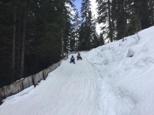 2018-01 Schlittelausflug (13)